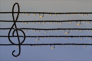Music on a rainy day
